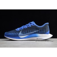 "For Sale Nike Zoom Pegasus Turbo 2 ""Racer Blue"" AT2863-400"